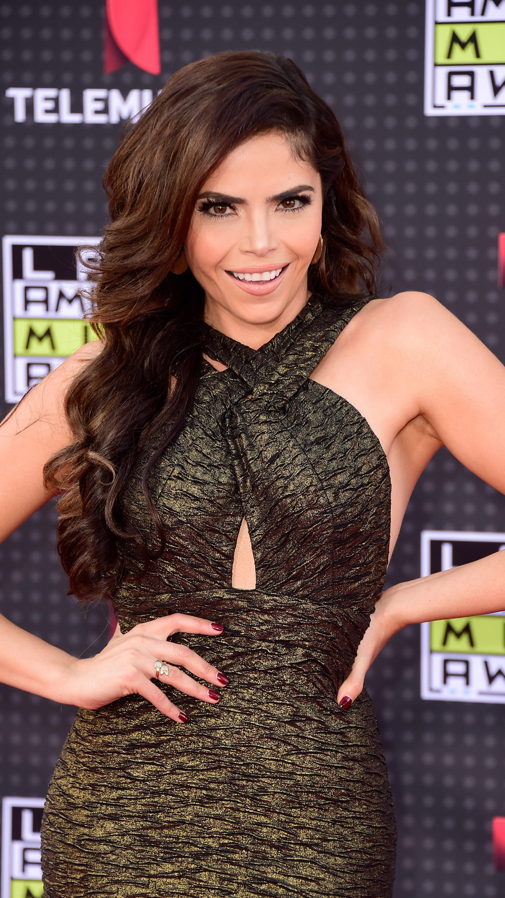 HOLLYWOOD, CA - OCTOBER 08:  Yarel Ramos attends Telemundo's Latin American Music Awards at the Dolby Theatre on October 8, 2015 in Hollywood, California.  (Photo by Frazer Harrison/Getty Images)